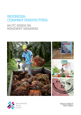 Indonesia: Company Perspectives
