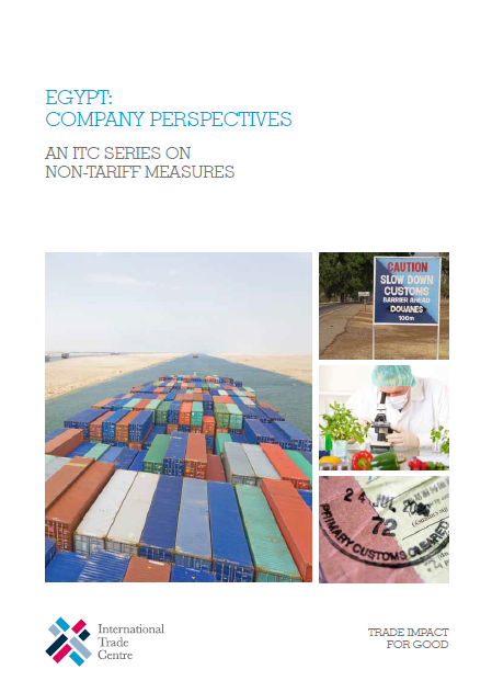 Egypt: Company Perspectives